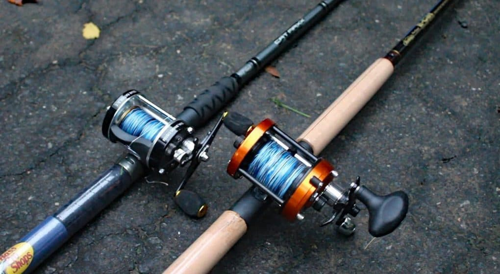 Image of Best catfish rods 2019